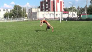видео Сева Фуллон
