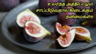 Benefits & Uses Of Figs in Tamil | Weight Loss - Weight Management | Healthy Life - Tamil.