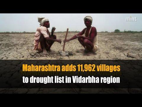Maharashtra adds 11,962 villages to drought list in Vidarbha region