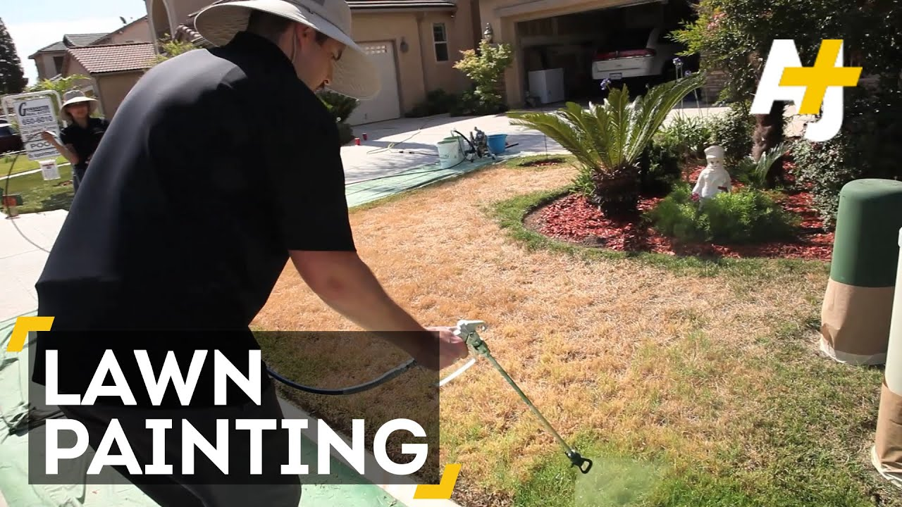 Drought Hack Paint Your Lawn Green Youtube