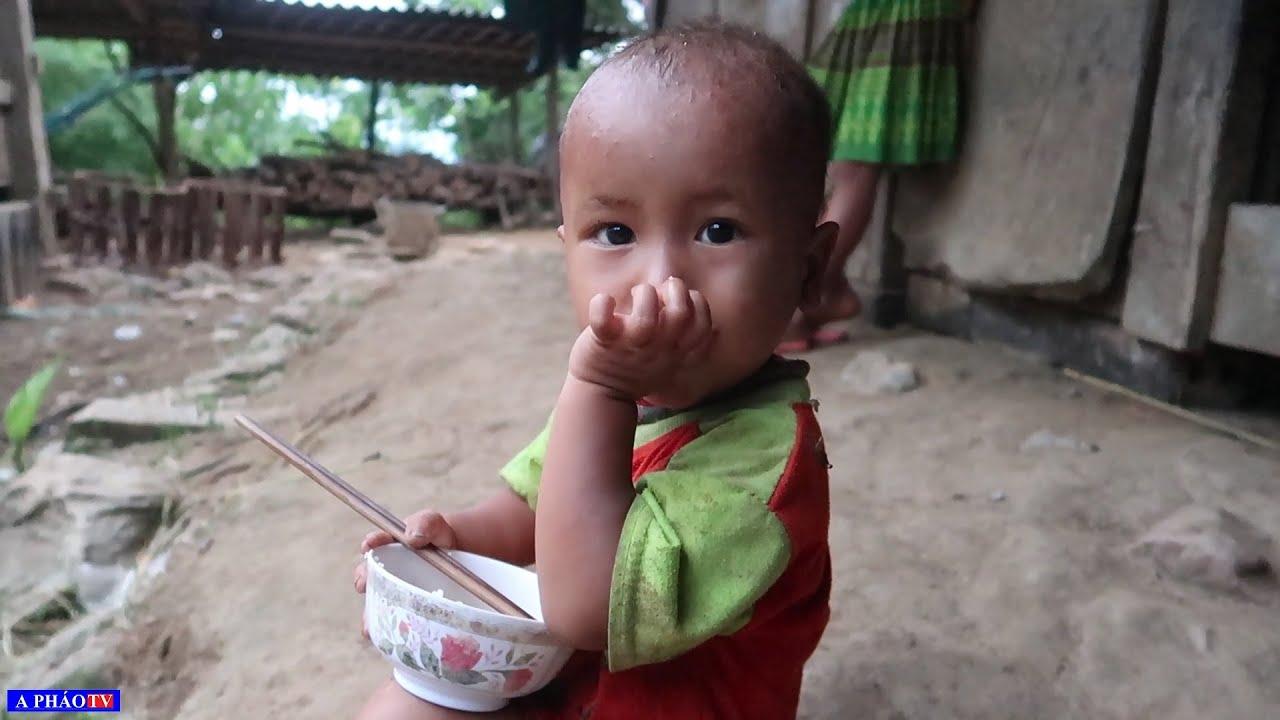 Bát cơm nguội lót dạ của em bé 2 tuổi - Khám phá bản # 3