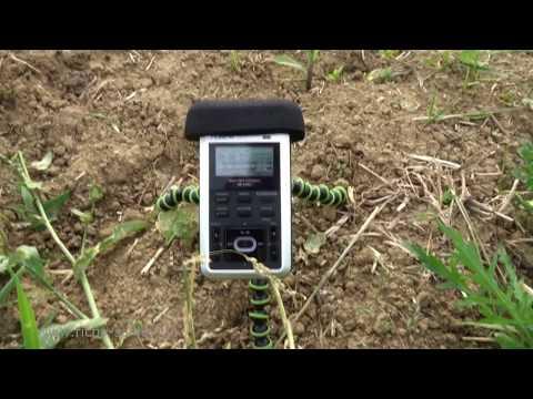 Roland R-05 (Metall) WAV MP3 Recorder Naturgeräusche nature sounds