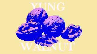 yung walnut - bathroom break