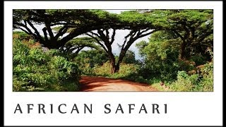 Download SEVEN RIVERS - safari in africa MP3 song and Music Video