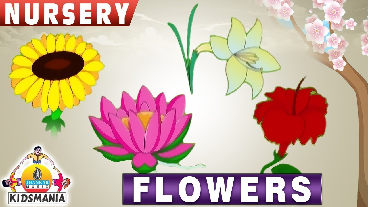 Flowers Names For Children In English | Name Of Flowers For Kids | Kids  Learning Videos - Kids Mania