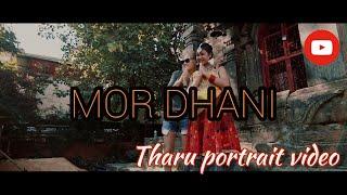 Mor Dhani -Tharu Portrait Video Ft. Zenisha, Prerana, Anjila Chaudhary |Pushkar| Ramesh Chaudhary