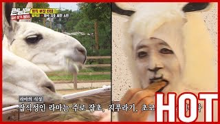 [HOT CLIPS] [RUNNINGMAN]    Members became characters?! 😨😨 XD (ENG SUB)