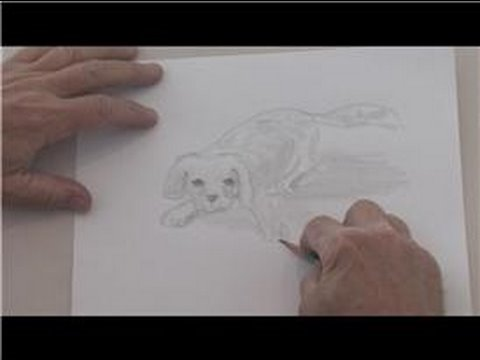 Drawing techniques ideas how to draw puppies in pencil youtube
