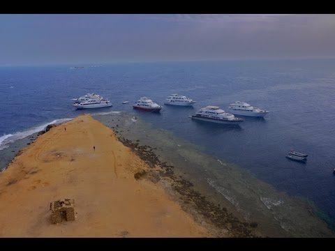 Simply The Best - Liveaboard, Egypt, Red Sea, With Emperor Divers