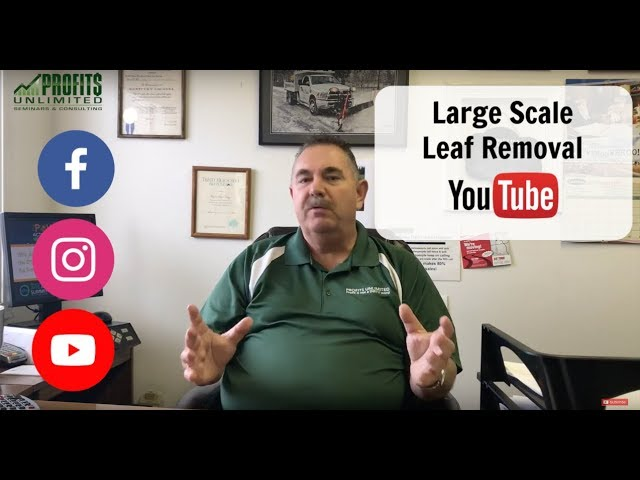 Large Scale Leaf Removal