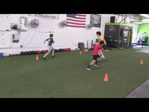 Elite Athletes working on agility and reaction
