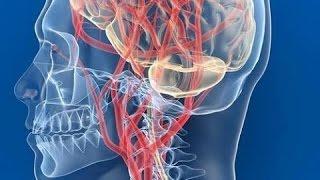 видео Венозная дисциркуляция: что это, причины, симптомы, лечение