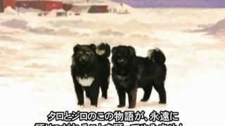http://amzn.to/19ACqNl ハンカチ文庫・南極犬物語 綾野まさる・作 くま...