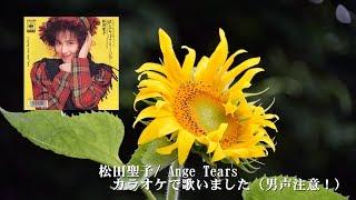 Angel Tears 松田聖子 歌ってみた(原Key低い男声注意!)