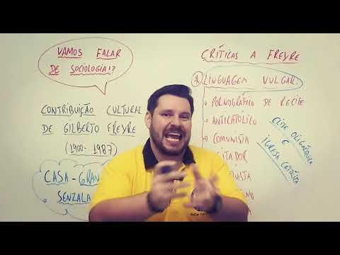 Contribuição Cultural de Gilberto Freyre  Crítica a Freyre 3