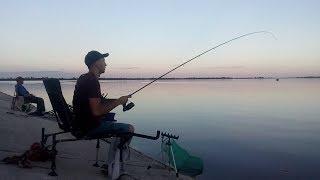 Ловля на Фидер Ночью. Карась. Озеро. Рыбалка.