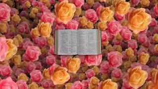 Salmo 121 - Dios te guardará de todo mal - ORANDO A LA LUZ ...