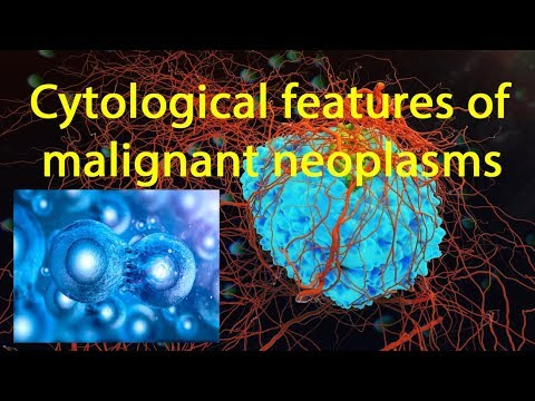 Cytological Features Of Malignant Neoplasms