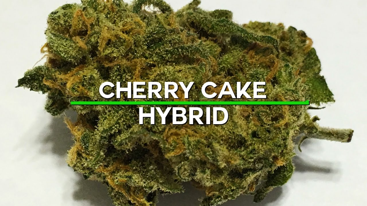 420 Strain Reviews- Cherry Cake
