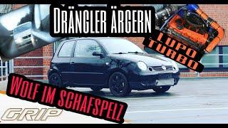 VW Lupo 400ps auf Autobahn | Drängler Ärgern | M4 ohne Chance | Grip mäßig unterwegs | Sleeper