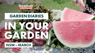 Gardening in March | New South Wales | Bunnings Garden Diary