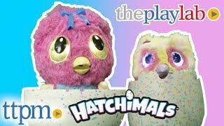 Play Lab | Hatchimals Hatchibabies and Hatchimals Mystery from Spin Master