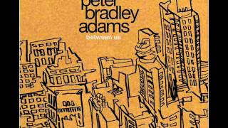 Peter Bradley Adams - Between Us
