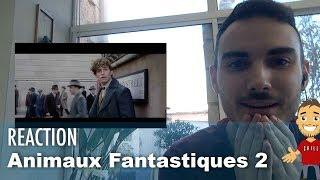 Ma REACTION aux ANIMAUX FANTASTIQUES 2 !