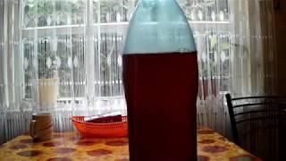 Как сделать прозрачным, домашнее пиво, без специального оборудования