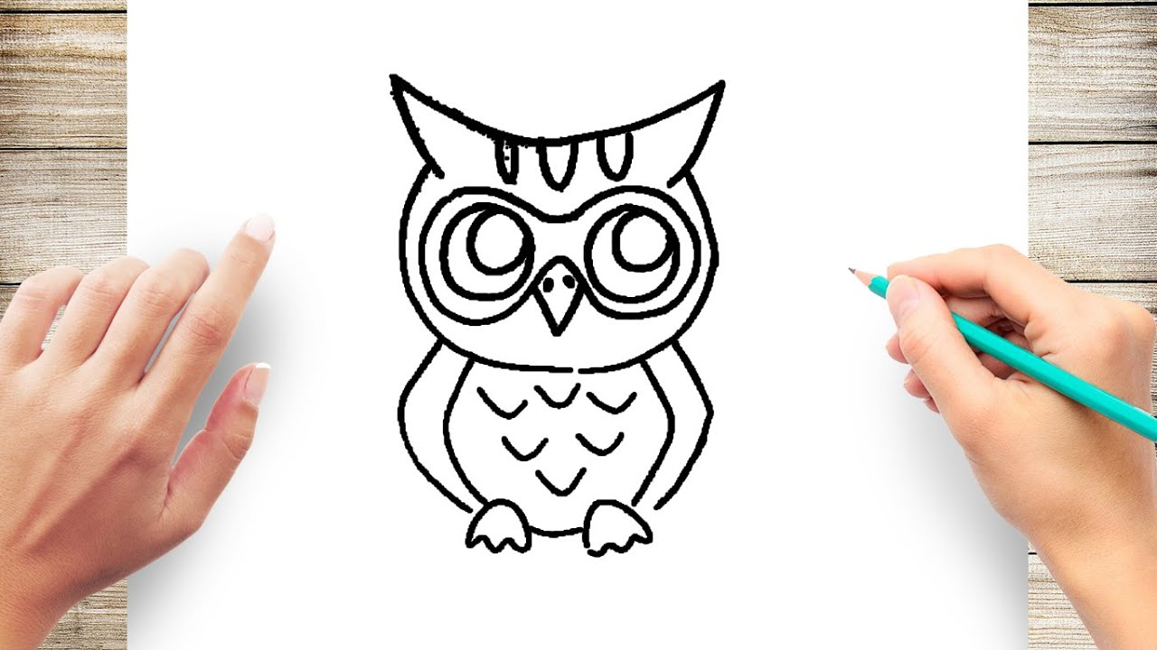 How to Draw an Owl Easy for Kids