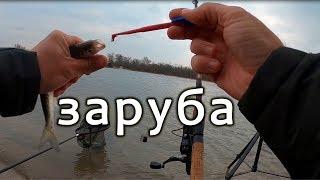 Рыбалка на фидер. Дружеский турнир!