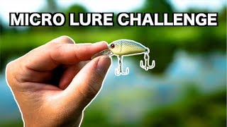 MICRO Lure Fishing Challenge!!! (Tiny Baits)