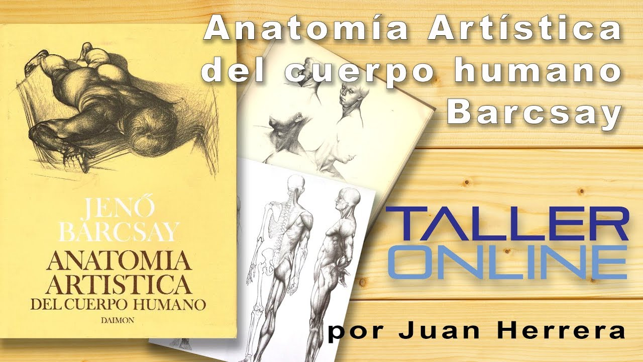 Review Libro Anatomía Artística del Cuerpo Humano de Jeno Barcsay ...