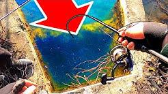 ЯКО РИБИ В ШАХТА - РАЗМАЗХМЕ ГИ!!! Риболов на пъстърва, шаран и щука!