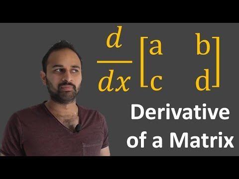 Derivative Of A Matrix : Data Science Basics