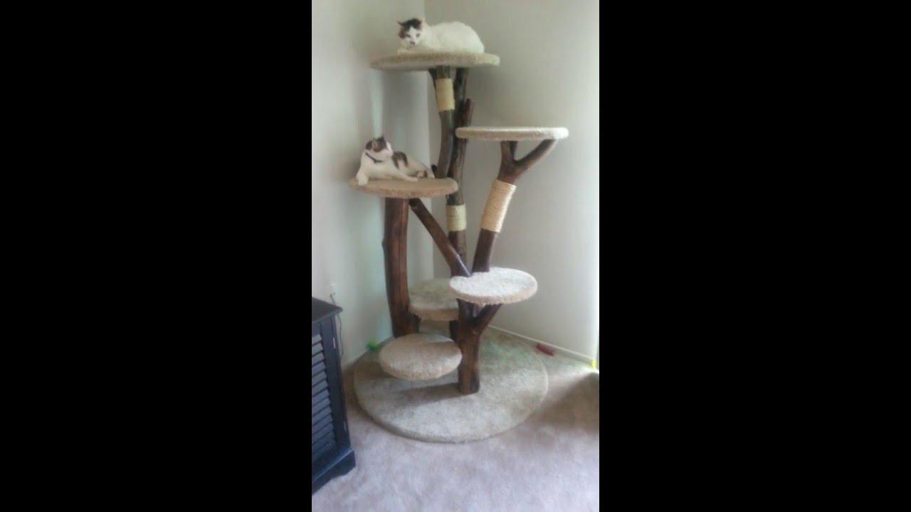 Real cat tree custom cat condo diy youtube for Make a cat condo