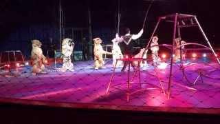 Natale al Circo a Firenze con Moira Orfei