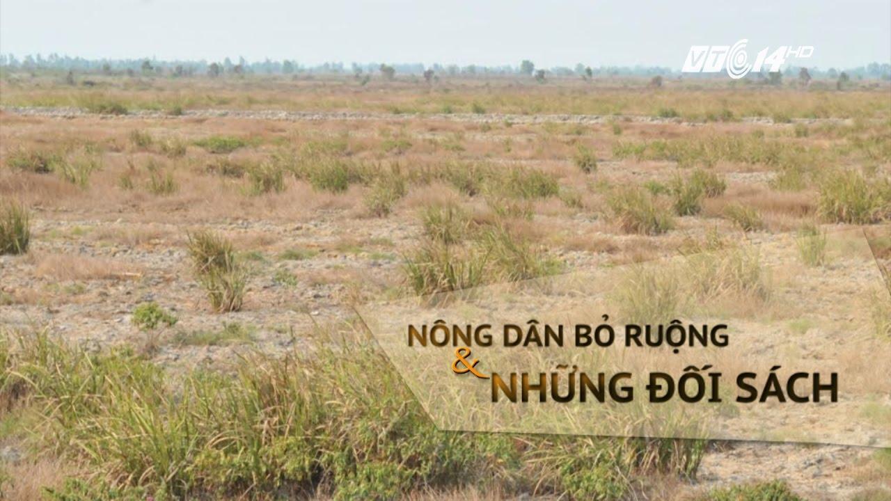 (VTC14)_Bỏ ruộng hoang vì giá đất chuyển đổi quá thấp
