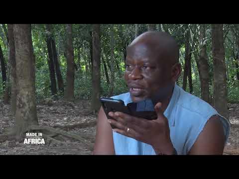 Made In Africa : Quand le porc vaut de l'or en Côte d'Ivoire