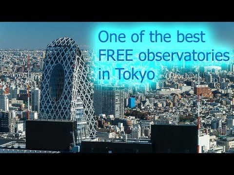 Tokyo Metropolitan Government Building - a great free observatory in Tokyo