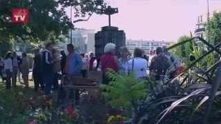 Fête des chênes verts 2014 du Chesnay
