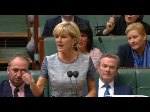 "Foreign Minister Questioned Over ""Julie Bishop Glorious Foundation"" Set-Up by Chinese Mining Magnate"