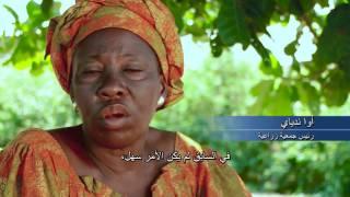 لتشرق الشمس في السنغال