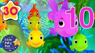 Counting Fish   +30 Minutes of Nursery Rhymes   Learn With LBB   #howto