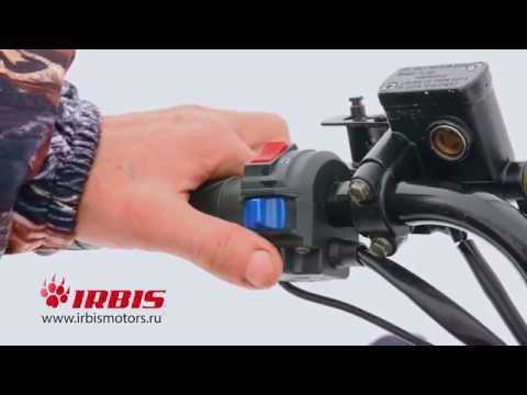 Обновленный Irbis Dingo T150 2016г