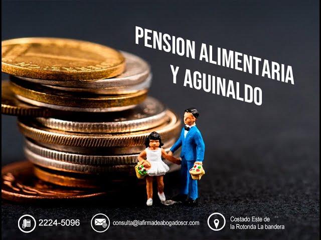 LAS PENSIONES ALIMENTARIAS Y EL AGUINALDO
