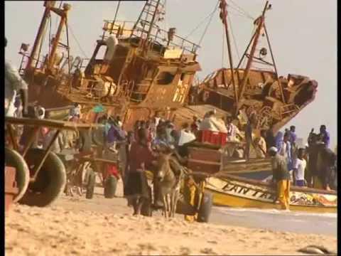 Mauritania IJV