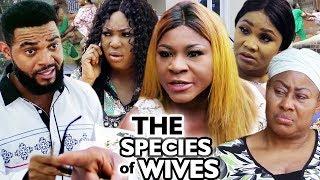 The Species Of Wives Season 7 & 8 - New Destiny Etiko / Onny Michael 2019 Latest Nigerian Movie