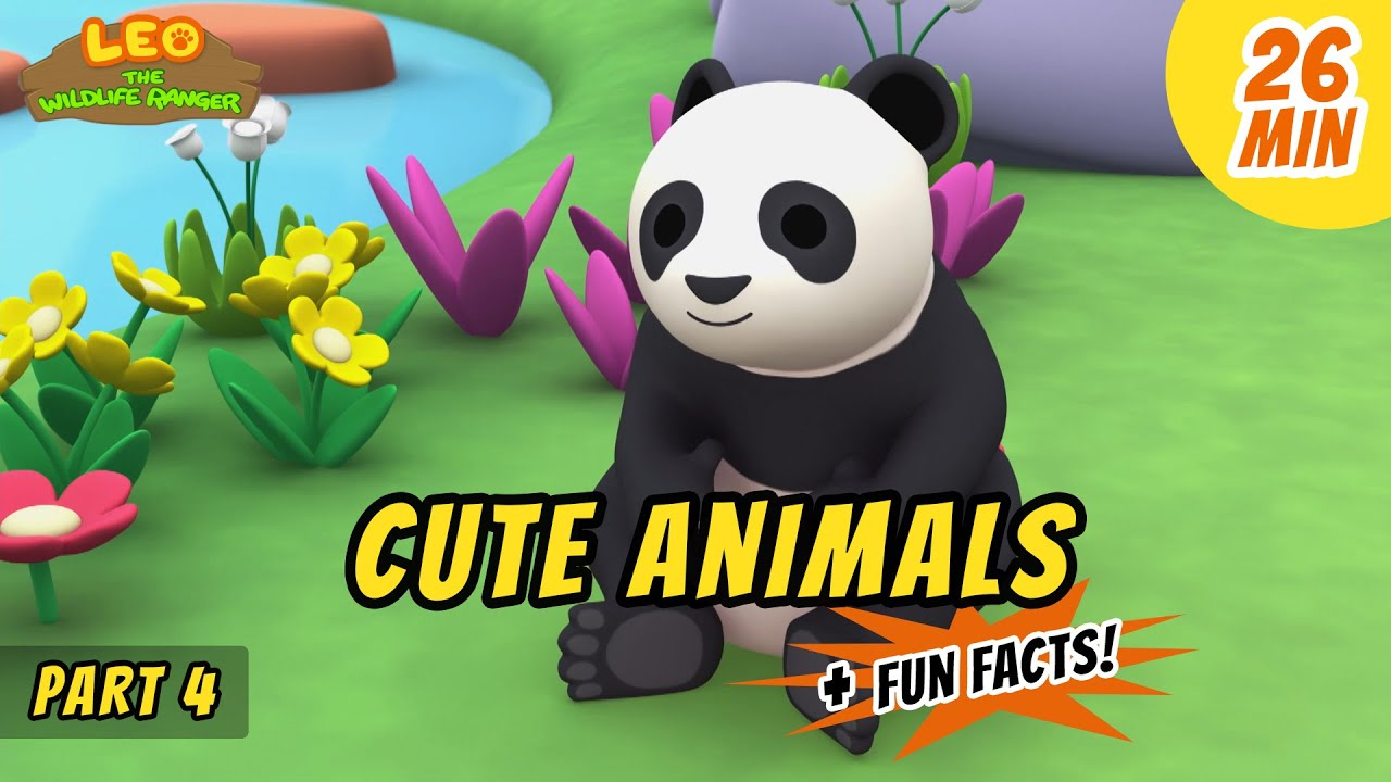 Cute Animals (Part 4/4) - Giant Panda and more animal stories!