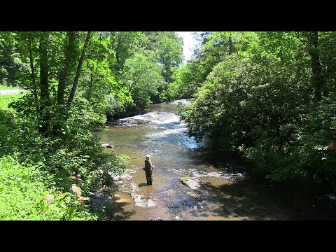 Fly Fishing The EF French Broad River, NC